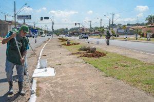 Av. Tancredo Neves ganha novo paisagismo no Jardim Inocoop