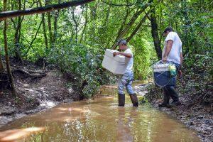 Técnicos apuram o que acontece com as águas do rio Corumbataí